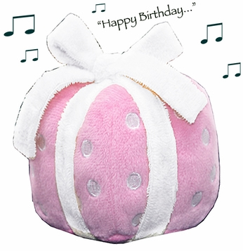 Musical Birthday Cake Dog Toy 1