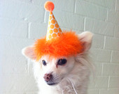 Handmade Dog/Cat Birthday Party Hats