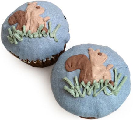 Delicious Organic pupcakes for Dogs