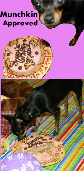 Round Birthday Cake For Dogs