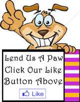 Like Pampered Paw Gifts on Facebook